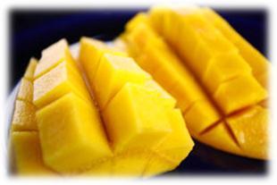 六龜的金煌芒果
