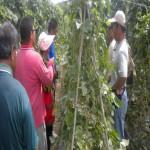 原住民發展社會企業及有機農場參訪研習
