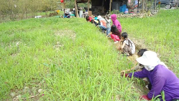 大人帶小孩一起幫小米疏苗,這些經驗傳承很重要